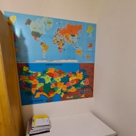 Dunya ve Turkiye Haritasi Set